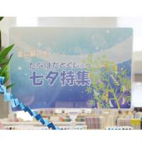 tanabata_2019-1